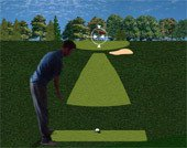 Игра Flash Golf 3D